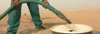 Lanceren van het nieuwe Waterboxx® plant cocoon model