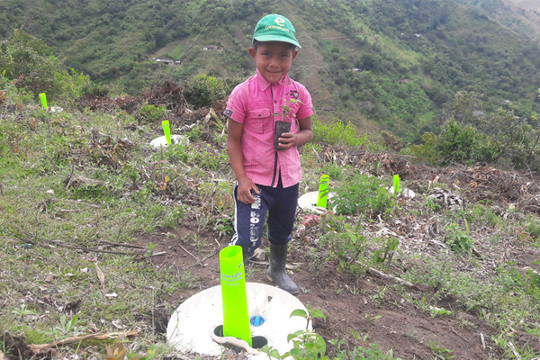 One of the sustainable projects in collaboration with the World Food Program (Innovation Accelerator) - planting productive trees in collaboration with 200 women in Colombia